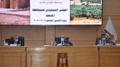 Photo of مجلس تنفيذي للمحافظة يقرر حظر تأجير المصارف الزراعية لمزاولة الصيد