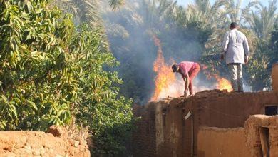 Photo of الحماية المدنية تسيطر علي حريق  قرية الجديده ب10 سيارات مطافي و20 فنطاس مياة