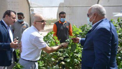 Photo of اللواء الزملوط يبحث مع وفد سفارة أوزبكستان إحياء صناعة الحرير الطبيعي