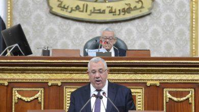 Photo of وزير الزراعة فى البرلمان: حصر وتصنيف 1.2 مليون فدان توسعات جديدة فى الوادى الجديد