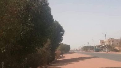 Photo of بالصور.. تعرض بعض المناطق بالوادي الجديد لرياح محملة بالأتربة