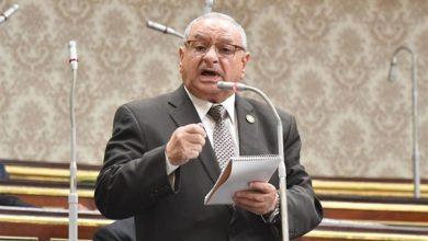 Photo of نائب ملوى يطالب بتثبيت العاملين على الصناديق الخاصة وزيادة المخصصات المالية للمحليات
