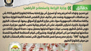 Photo of شائعة: ظهور بؤر جديدة من فيروس إنفلونزا الطيور H10 في مصر