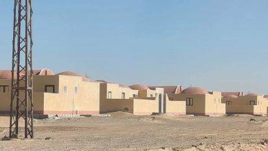 Photo of الوادي الجديد تخصص 3086 فدانا ظهيرًا زراعيًا لقرى التوطين والجذب السكاني