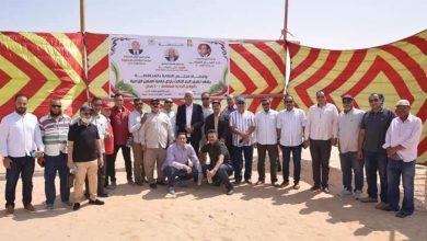 Photo of وفد نقابة المهن الزراعية في ضيافة محافظ الوادي الجديد